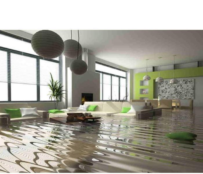 Water Damage Why Choose a Professional Mitigation Team?