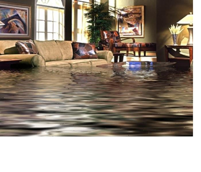 Water Damage GOT WATER DAMAGE? HERE'S WHEN & WHY YOU NEED A SPECIALIST