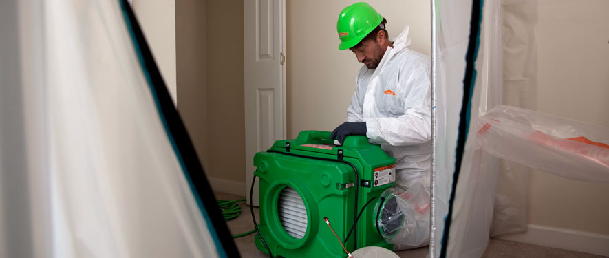 Palm Desert, CA mold cleanup