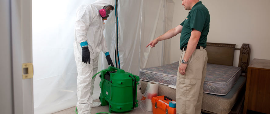 Palm Desert, CA mold removal process